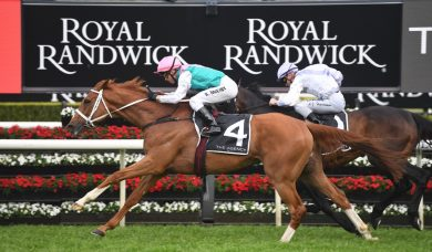 Finche's Melbourne Cup Prospects Increase Following Strong Kingston Town Stakes Win