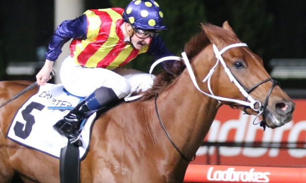 Narure Strip to do his own thing in 2020 Challenge Stakes