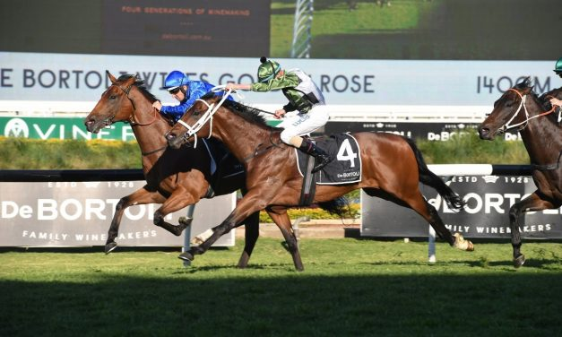 Bivouac digs in to win 2019 Golden Rose