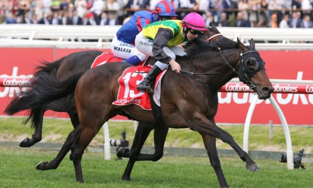The Chosen One into Caulfield Cup with Herbert Power Stakes win