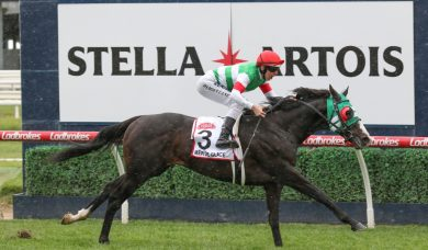 Constantinople draws perfect 2019 Melbourne Cup barrier