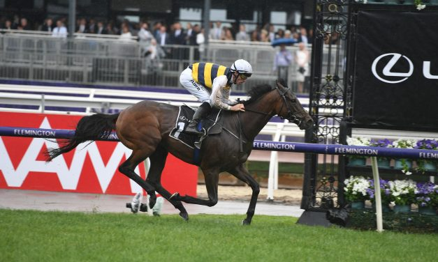 Downdraft ready to back up in 2019 Melbourne Cup