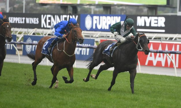 Exceedance excels to win Coolmore Stud Stakes