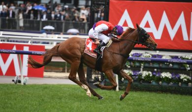 2019 Victoria Derby Results: Oliver wins his sixth on Warning