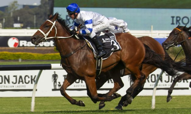 Doncaster Mile hope Kolding can return to his best back in Sydney