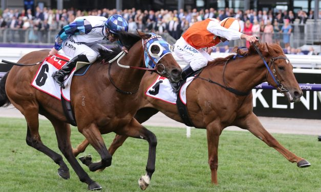 2020 Melbourne Cup Day Live Results & Analysis: Exhilarates Salutes Second-Up in the Last of the Day