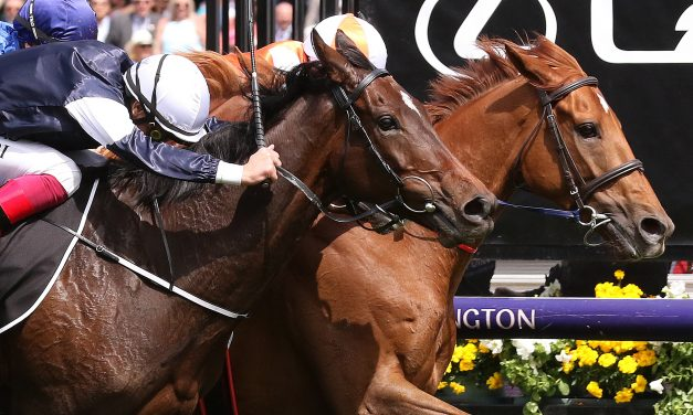 2019 Melbourne Cup Results: Vow And Declare wins