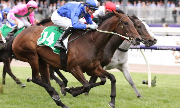 Oceanex Returns To Winning Form In Matriarch Stakes