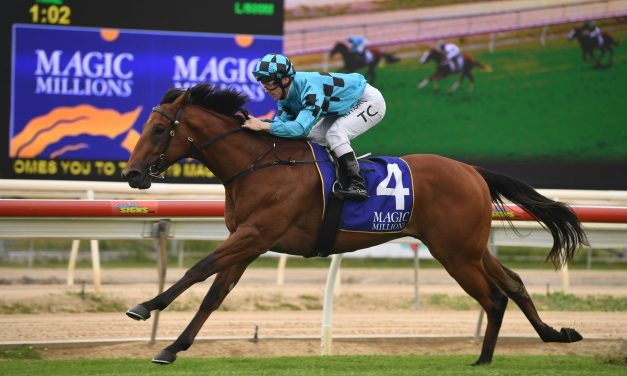 Bartley needs one more win to make the 2020 Magic Millions 2yo Classic field