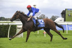 Rubisaki, above, wins the Inglis Sprint at Warwick Farm. Photo by Steve Hart.