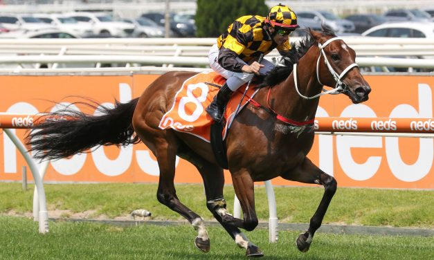 Letzbeglam to get a better run from barrier 3 in 2020 Blue Diamond Stakes
