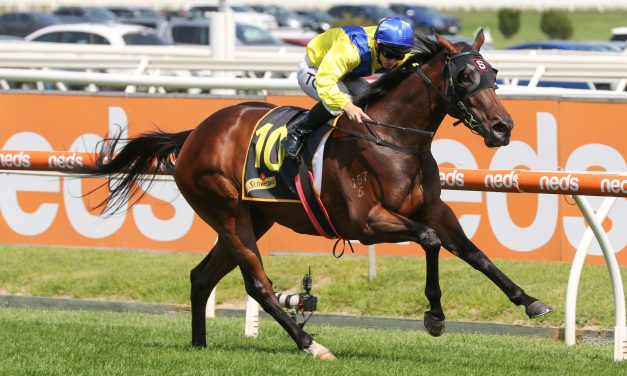 Anaheed challenging for favouritism in 2020 Oakleigh Plate