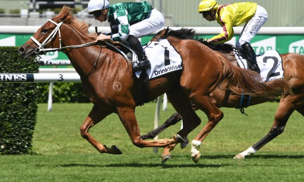 Odeum is a dominant thousand Guineas winner