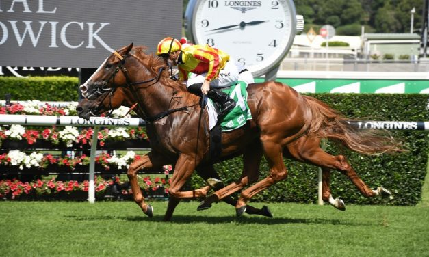 Quackerjack is on target for the Doncaster Mile after Liverpool City Cup win
