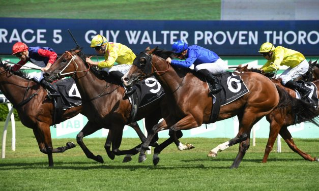 Dawn Dawn sweeps into Coolmore Classic contention with win in Guy Walter Stakes