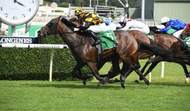 Kiwi filly Probabeel wins 2020 Surround Stakes