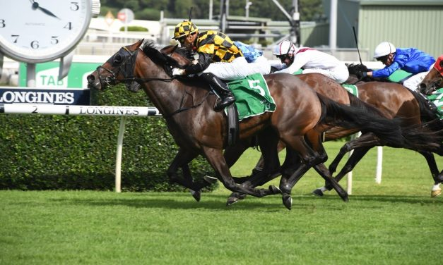 Kiwi filly Probabeel wins 2020 Surround Stakes