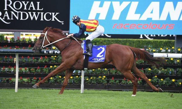 Waller rules out William Reid Stakes for Nature Strip