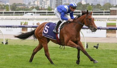 Minhaaj firms in 2020 Golden Slipper betting