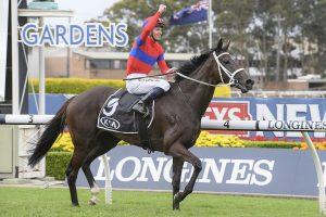 Verry Elleegant Horse Form (Photo: Steve Hart) | HorseRacing.com.au