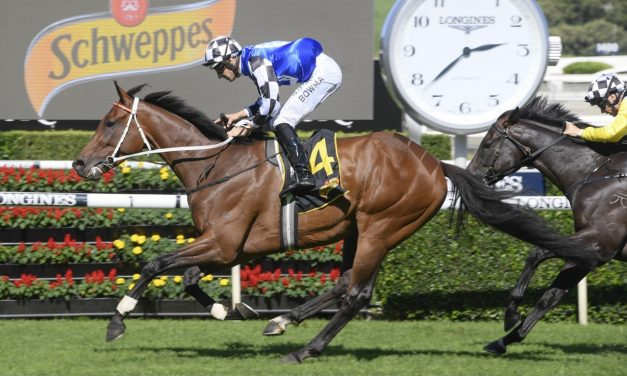 The Sydney Cup door is open for Chairman's Quality winner Raheen House