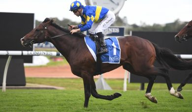 Dawn Passage remains the favourite for 2020 Stradbroke Handicap despite horror barrier