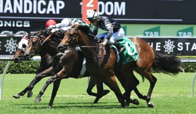 Upset Victory Stakes Winner Victorem Onto Stradbroke