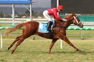 Instant Celebrity (Photo: Jenny Barnes) - HorseRacing.com.au