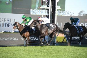 Ole Kirk, in green colours, and North Pacific, in white colours, fight out the finish of the 2020 golden Rose at Rosehill. Photo by Steve Hart.