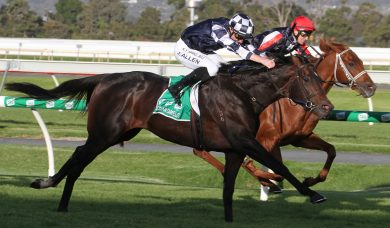 Cox Plate favourite Russian Camelot wins Underwood Stakes