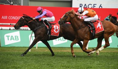 Trumbull Claims 2020 Sydney Stakes First Up