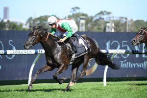 2021 Queen Elizabeth Stakes: Verry Elleegant Faces Just Six Rivals