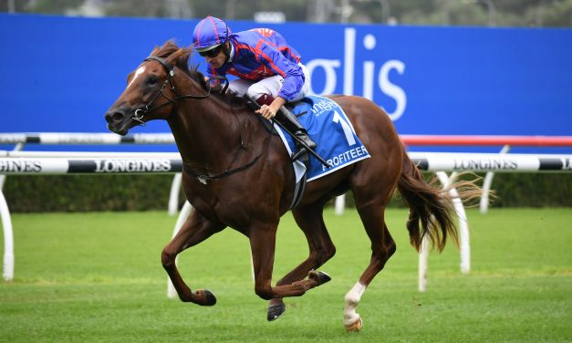 Updated 2021 Golden Slipper Field & Betting Odds: Punters on Profiteer