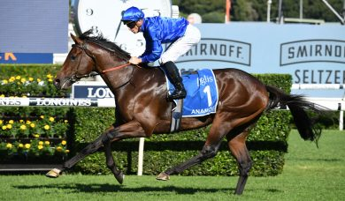 Dominant Inglis Sires' Winner Anamoe Now Eyes Champagne Stakes