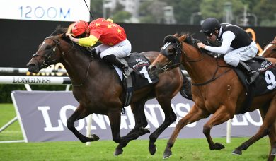 Wild Ruler Remains Unbeaten at Randwick with Brilliant Arrowfield Stakes Win