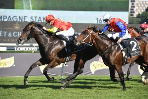 Champagne Stakes 2021 Winner Captivant Defeats Hilal