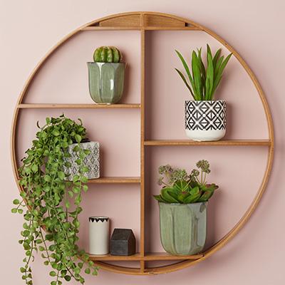 ALBI plant holder indoor livnig