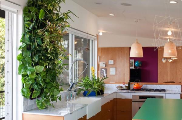 Vertical Garden in the Kitchen. Image: West Elm