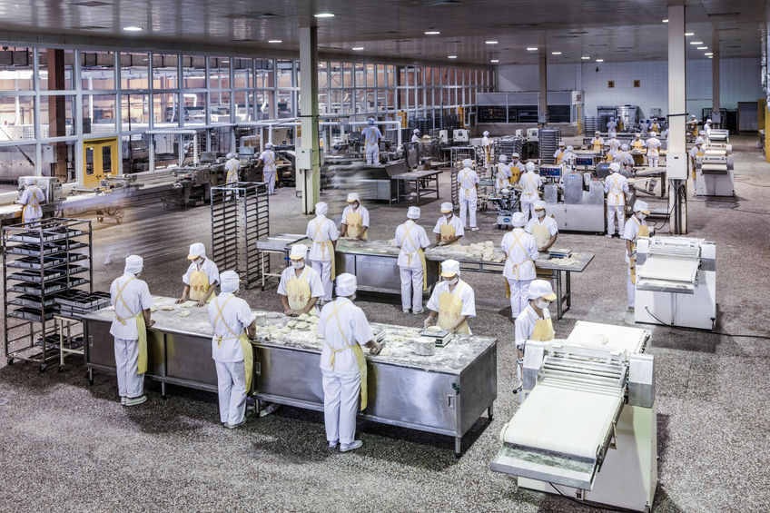 35543141 - workers in the food production factory