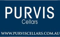 Purvis-Logo-Blue