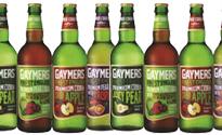 Gaymers2