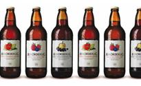 Rekorderlig-Bottles2