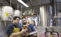 Brewery workers examining beer in beaker