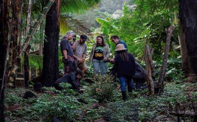 ByronRangers_BushRegeneration_Wanganui-85