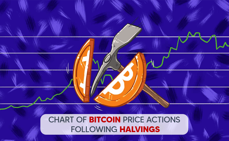 Bitcoin Halving effect on its price