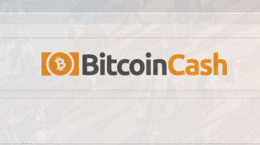 Roger Ver Believes Bitcoin Cash (BCH) Has Potential to Soar 1000X