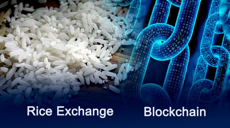 IT Company Fujitsu Collaborates with Rice Exchange to Launch Ricex Trading Platform on Blockchain
