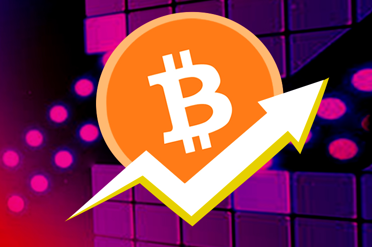 Crypto Winners And Losers of the Year 2019