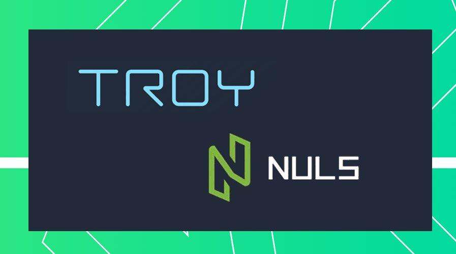 NULScrypto review