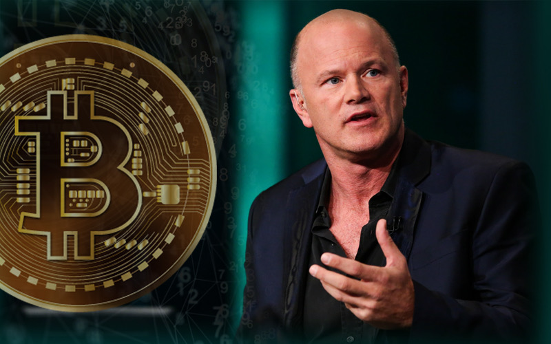 Mike Novogratz Thinks Bitcoin' Volatility Will Continue This Year